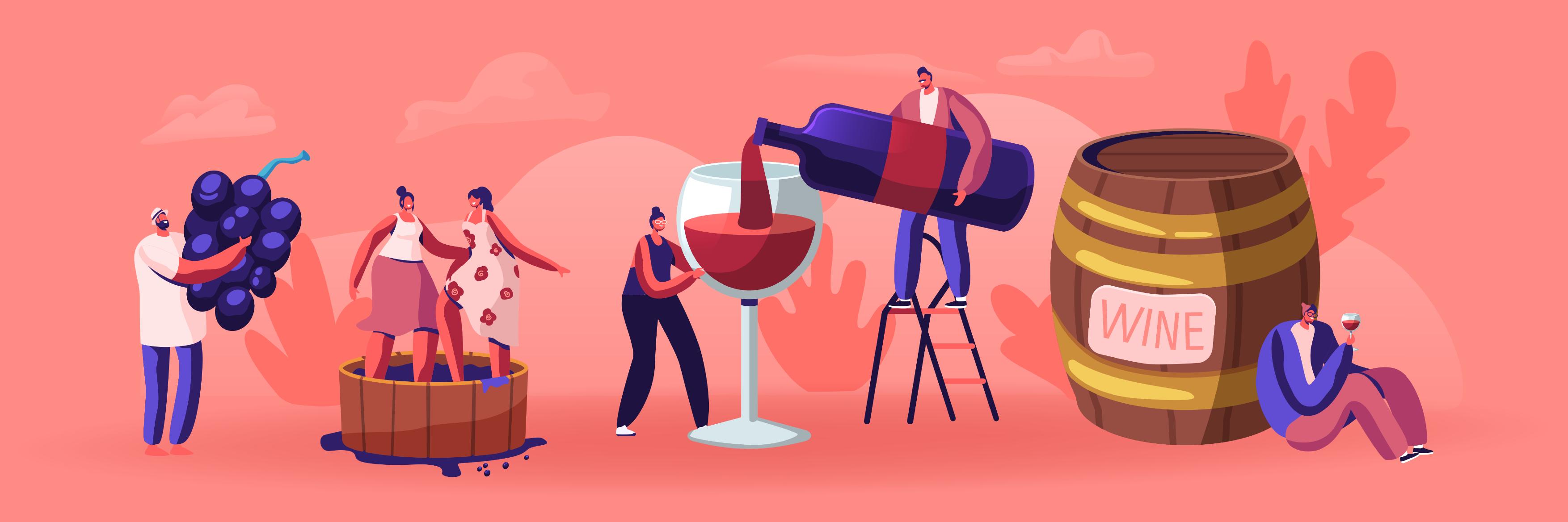 La vinification du Bordeaux rouge